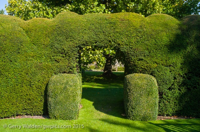 The yew hedge and arch in the Masters Garden at the Hospital of St. Cross in Winchester, England.